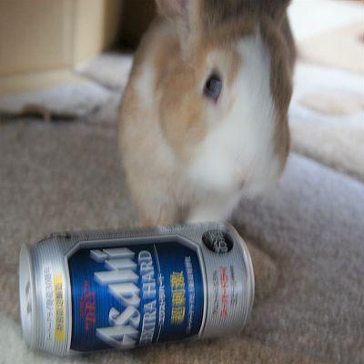 とちと缶ビール2