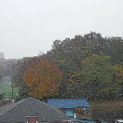 雪の降り始め