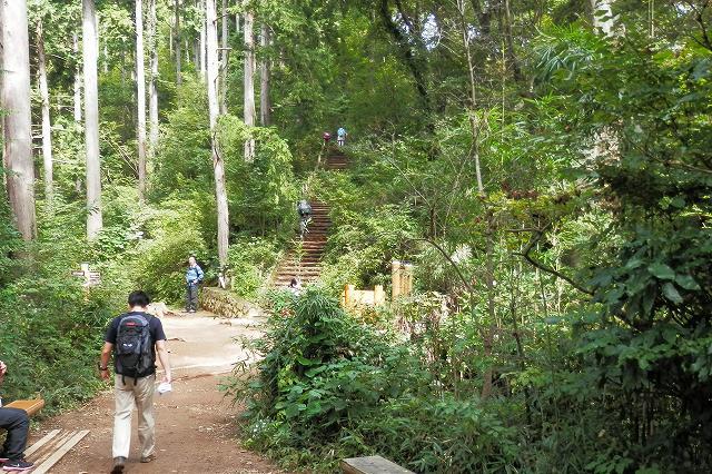 稲荷山コース、山頂手前階段