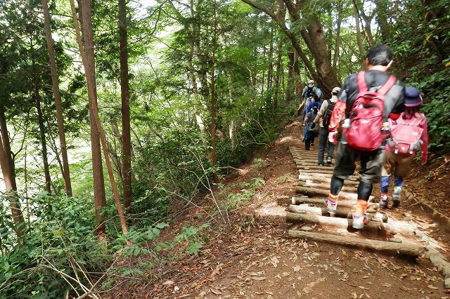 4号路:高尾山