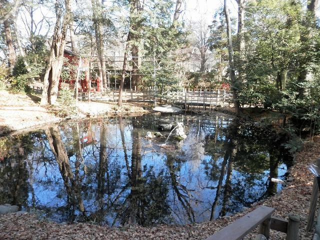 調神社裏の池