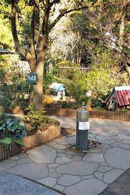 トイレ前の庭2
