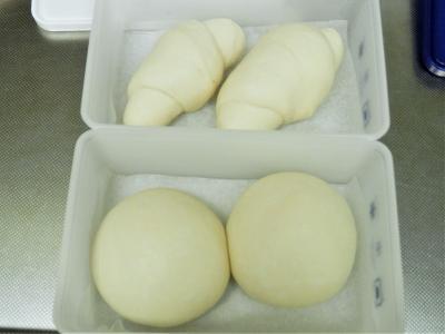 発酵途中(2)