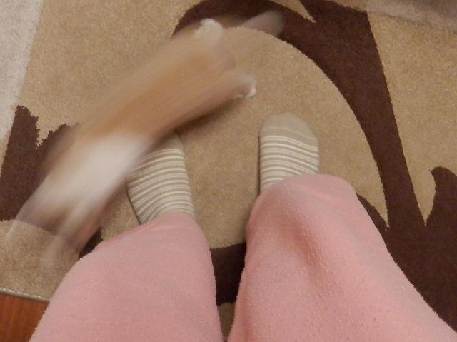 足の周りをまわるとち2