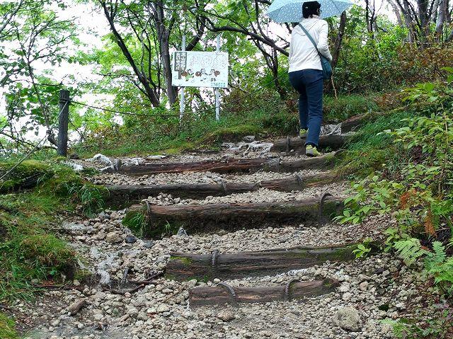 樽前山の登山道
