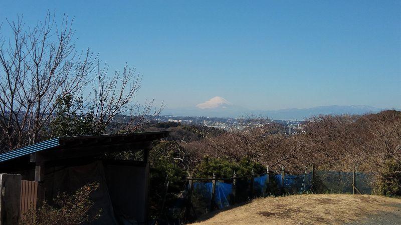 円海山入口から富士山