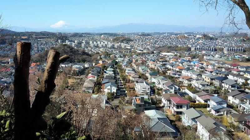 円海山のシン・ゴジラスポットから富士山