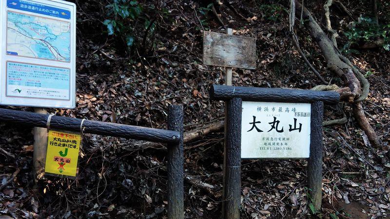 円海山内、大丸山のふもと2