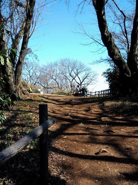 大丸山山頂(円海山)