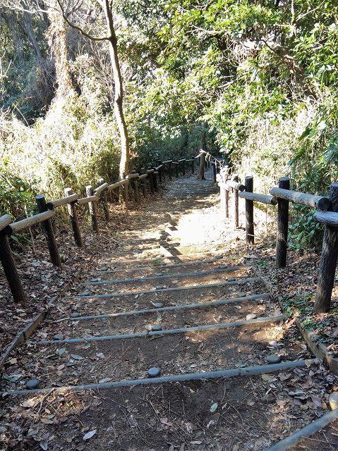 大丸山山頂から階段を降りる(円海山)