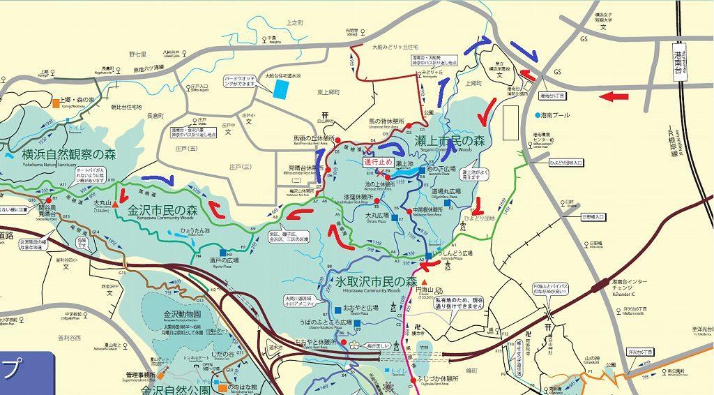 円海山で大丸山へ行く地図